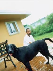 男性とシャンプーされた犬の写真素材 [FYI02067050]