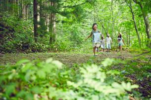虫取りをする子供達の写真素材 [FYI02067218]