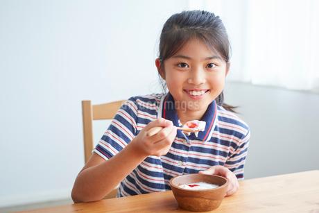 ヨーグルトを食べる女の子の写真素材 [FYI02067312]