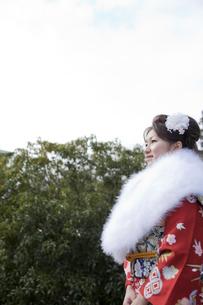 振袖姿の女性横顔の写真素材 [FYI02067524]