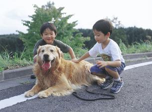 道路の男の子2人と犬の写真素材 [FYI02067727]