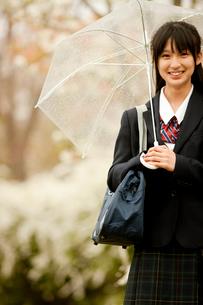 傘を差しながら通学する中学生の写真素材 [FYI02067772]