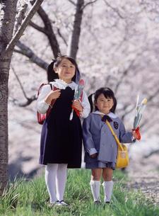 桜の木と新入学と新入園の女の子の写真素材 [FYI02067790]