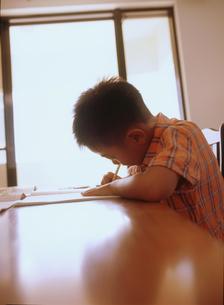 勉強する男の子の写真素材 [FYI02067821]