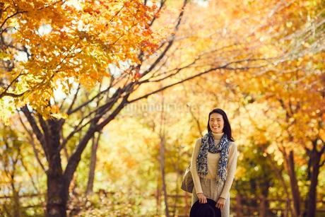 紅葉とミドル女性の写真素材 [FYI02067844]