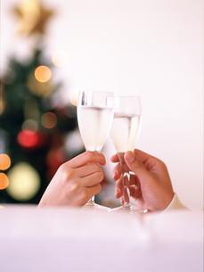 乾杯する手元とクリスマスツリーの写真素材 [FYI02067850]