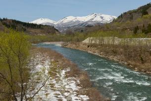 春の寒河江川と月山 山形県の写真素材 [FYI02068025]