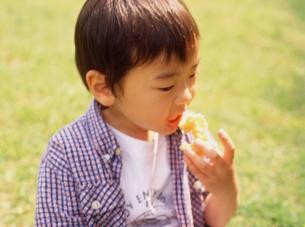 公園でドーナツを食べる男の子の写真素材 [FYI02068031]