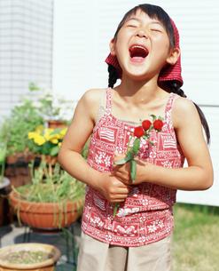 赤い花を持ち笑う女の子の写真素材 [FYI02068127]