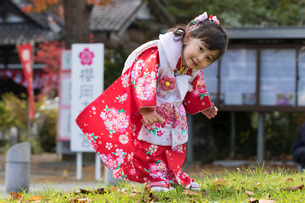 七五三和装の女の子の写真素材 [FYI02068471]