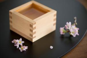 枡酒と桜の花の写真素材 [FYI02068484]