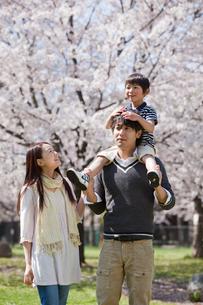 子供を肩車する父親と寄り添う母親の写真素材 [FYI02068891]
