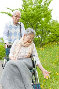 公園を散歩する車いすに乗ったシニア女性とシニア男性の写真素材 [FYI02069045]