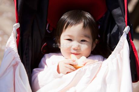 ベビーカーに乗った赤ちゃんの写真素材 [FYI02069115]