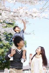 息子を肩車する父親と笑顔で寄り添う母親の写真素材 [FYI02069128]