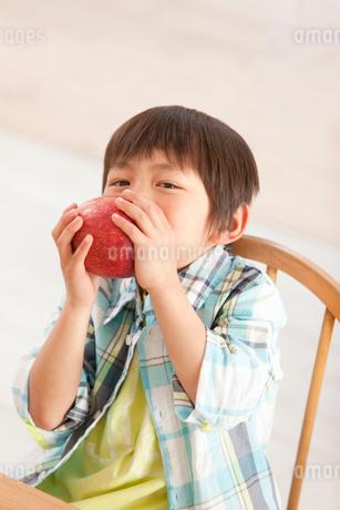 リンゴをかじる男の子の写真素材 [FYI02069143]