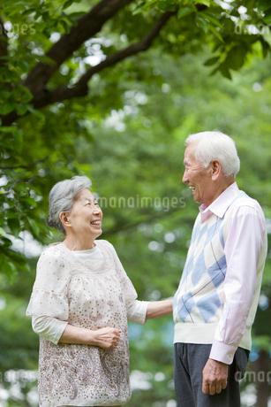 笑顔で向き合うシニア男女の写真素材 [FYI02069225]