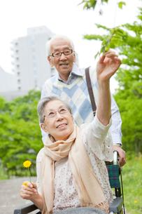 公園を散歩する車いすに乗ったシニア女性とシニア男性の写真素材 [FYI02069384]