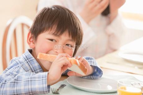 朝食で食パンを食べる男の子の写真素材 [FYI02069690]