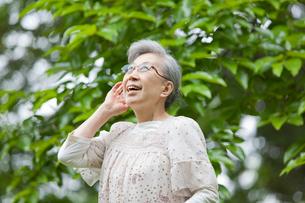 耳に手を当てて鳥の声を聞いているシニア女性の写真素材 [FYI02069708]