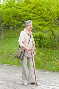 公園を散歩する杖をついたシニア女性の写真素材 [FYI02069824]