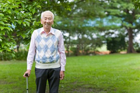 杖をついて公園を散歩するシニア男性の写真素材 [FYI02069876]