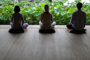 座禅をする外国人3人の写真素材 [FYI02070610]