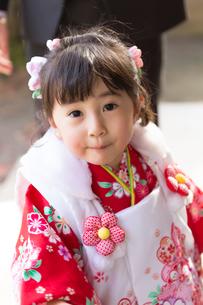 七五三和装の女の子の写真素材 [FYI02070630]