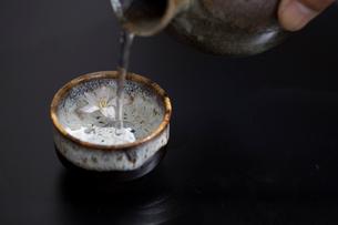 花見酒の写真素材 [FYI02070822]
