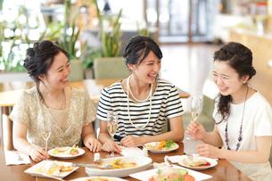 女子会をする女性3人の写真素材 [FYI02071178]
