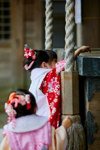 お参りをする七五三和装の女の子の写真素材 [FYI02071269]