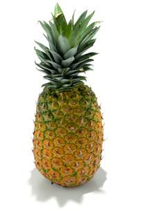 パイナップルの写真素材 [FYI02071816]