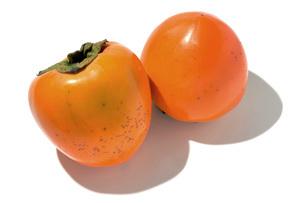 百目柿(ヒャクメガキ)の写真素材 [FYI02071885]