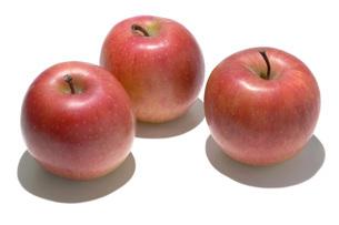 北斗(ホクト) リンゴの写真素材 [FYI02071959]