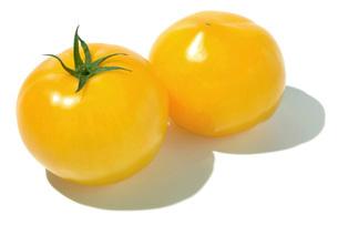 イエロートマトの写真素材 [FYI02072003]