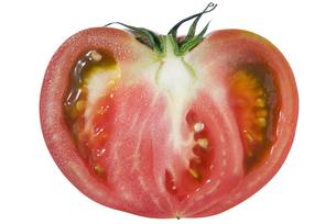 大玉トマト断面の写真素材 [FYI02072090]