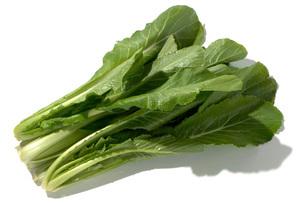 菜種菜(ナタネナ)の写真素材 [FYI02072248]