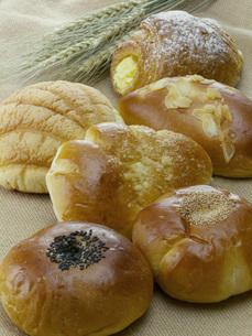 パンの写真素材 [FYI02072260]