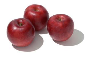 紅玉(コウギョク) リンゴの写真素材 [FYI02072482]