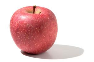 サンフジ(リンゴ)の写真素材 [FYI02072616]