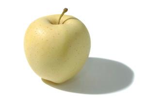 金星(リンゴ)の写真素材 [FYI02072791]