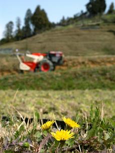 春の田園風景の写真素材 [FYI02072957]