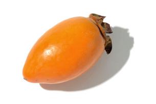 筆柿(フデガキ)の写真素材 [FYI02073105]