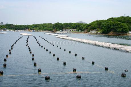 養殖筏の写真素材 [FYI02073378]