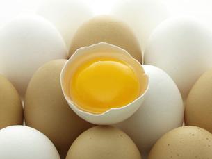 卵と黄身の写真素材 [FYI02073511]
