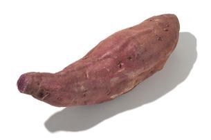 紫芋(サツマイモ)の写真素材 [FYI02073546]