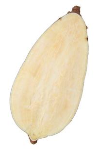 安納芋断面の写真素材 [FYI02073590]