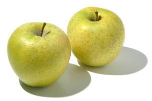 王林(オウリン) リンゴの写真素材 [FYI02074152]