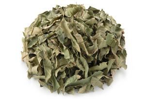 グァバ茶の写真素材 [FYI02074173]
