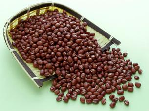 小豆の写真素材 [FYI02074191]